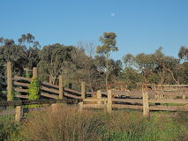 Moon over a desolate cattle loading ramp Stock Images