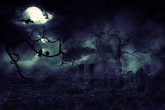 Moon over Field. Dark mysterious night field and moon in the sky Royalty Free Stock Photography