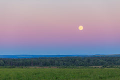 Moon over the field and forest summer night. Blue landsape Royalty Free Stock Image