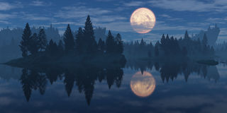 Moon over the forest Royalty Free Stock Photos