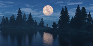 Moon over the forest. Royalty Free Stock Image