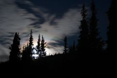 The moon over the forest, Kyrgzstan Stock Images