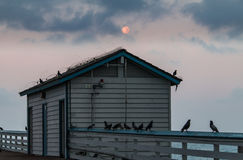 Moon over pier shack Royalty Free Stock Images