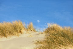 Moon over sand Royalty Free Stock Photos