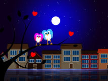 Moon Owls Represents Night Time And Apartment Royalty Free Stock Images