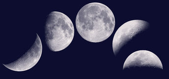 Moon phases. Bitmap illustration of the moon phases and dark night Royalty Free Stock Photos