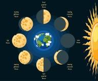 Moon phases. royalty free illustration