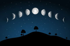 Moon Phases - Night Landscape. With Trees Royalty Free Stock Photography