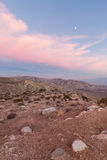 Moon and pink clouds over desert Royalty Free Stock Images