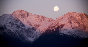 Moon Rise Royalty Free Stock Photos