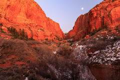 Moon rise in Kolob Canyon, Zion, USA.. Stock Image