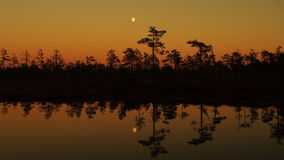 Moon rise over forest lake and orenge sky after sunset Royalty Free Stock Photo
