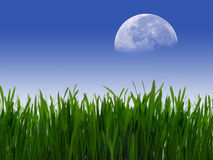 Moon Rising. Over Clear blue sky over green field royalty free stock photos