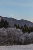Moon rising on a frosty morning Stock Image