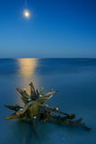The moon seen from the ocean. I took this picture near Sulina, Tulcea. Danube Delta, Romania Stock Image