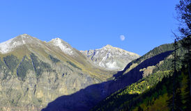 Moon, snow covered mountains and yellow aspen Stock Image
