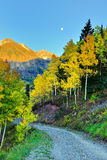 Moon, snow covered mountains and yellow aspen at sunset Stock Photography