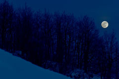 Moon on snow in winter time Stock Photography