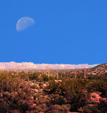 Moon Sonora Deasrt. Moon over Sonora desert in central Arizona USA Stock Photo
