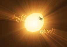 Moon and spider Halloween light flare Stock Images