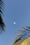 Moon still in the morning. With a clear sky in Porto Seguro, Bahia - Brasil Royalty Free Stock Photos