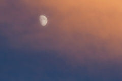 Moon at Sunset Stock Image