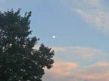 Moon in the sunset royalty free stock photography