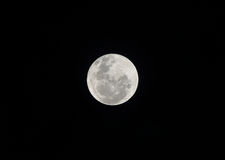 The moon. Take it from sangihe island Royalty Free Stock Photo