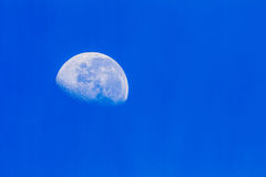 Moon Blue Sky. Moon at three quarter phase in the morning blue sky royalty free stock photo