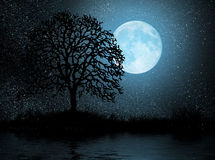 Moon And Tree Royalty Free Stock Image