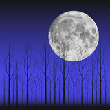 Moon and Tree Royalty Free Stock Photo