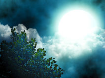 Moon and tree Stock Images