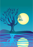 Moon and tree. A full moon is reflected on water with a bare tree tree in the foreground Royalty Free Stock Photo
