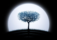 Moon tree silhouette. Against black background (other landscapes are in my gallery