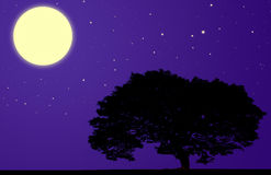 Moon tree silhouette Royalty Free Stock Photos