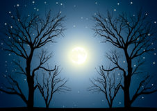 Moon trees. Landscape with trees on a background of the sky in a full moon Stock Image