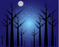 Moon trees. Trees on a blue background of the sky in a full moon Royalty Free Stock Images