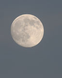 The Moon at Twilight in December Royalty Free Stock Images