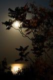 Moon und sehen Sie Stockbilder