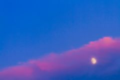 Moon under pink cloud on blue sky Stock Photography