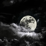 Moon. Vintage gravure style effect Stock Photos