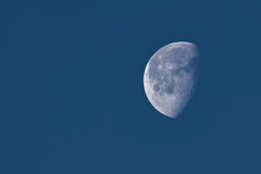 The Moon in a Waning Gibbous Phase. In dark blue sky in early morning, showing detailed craters royalty free stock photos