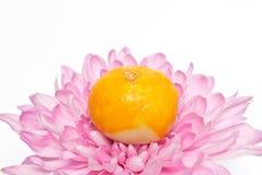 Mooncakes na dália cor-de-rosa Fotografia de Stock