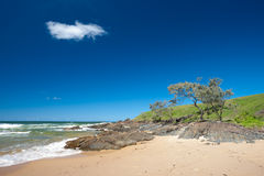 Moonee Beach Area  in Australia Stock Photography