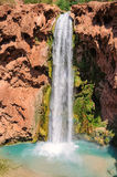 Mooney nedgångar, Havasu kanjon, Arizona Royaltyfri Bild