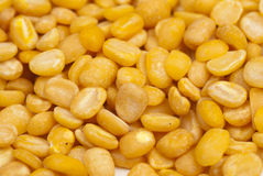 Moong Daal lentils Royalty Free Stock Photo