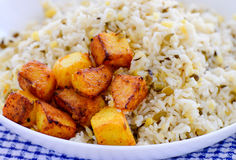 Moong dal Rice and Potato Curry Stock Images