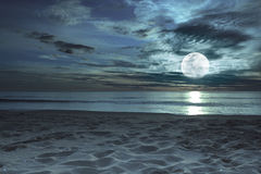 Moonlight. Beautiful beach at twilight time with moon in the sky Stock Image
