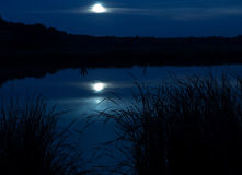 Moonlight. Lake in a moonlight. mistery and calm landscape Royalty Free Stock Images