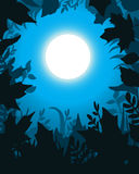 Moonlight. Leaves border, night scene background Royalty Free Stock Photography